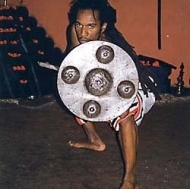 Martial arts in Kerala, India