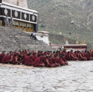 Young monks at prayer